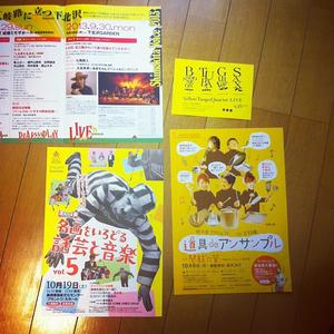 yellowfl.jpg