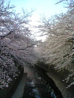 06-03-28_16-42.jpg